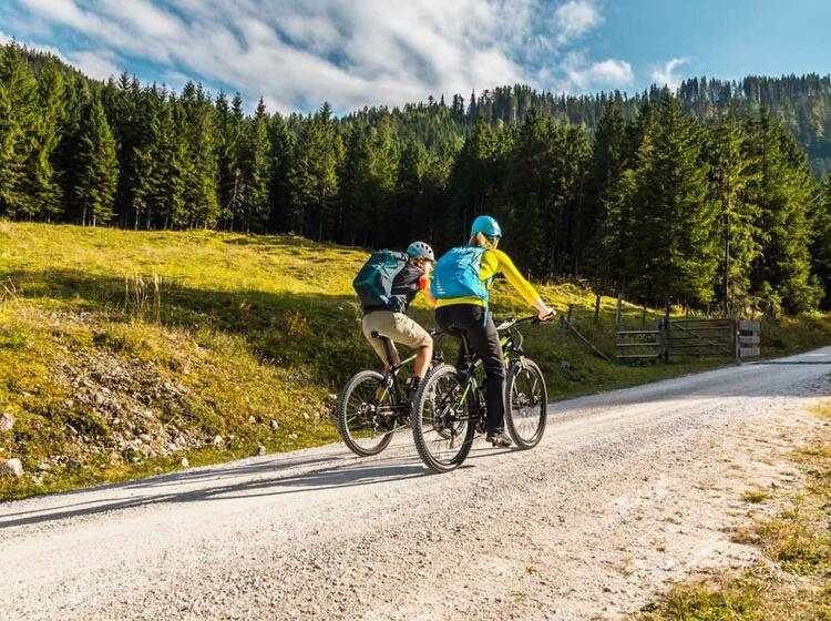 Abfahrt Mit Dem Bike Von Der Kuehroint Alm In Berchtesgaden