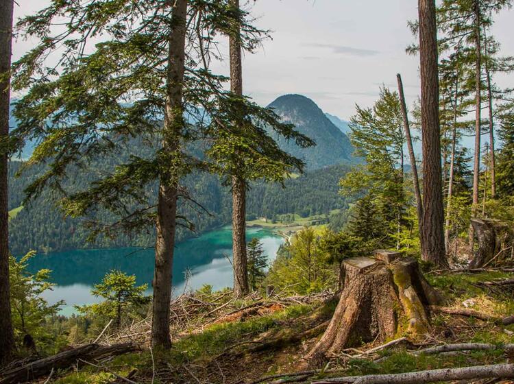 Bergwandern Am Hintersteiner See Im Wilden Kaiser