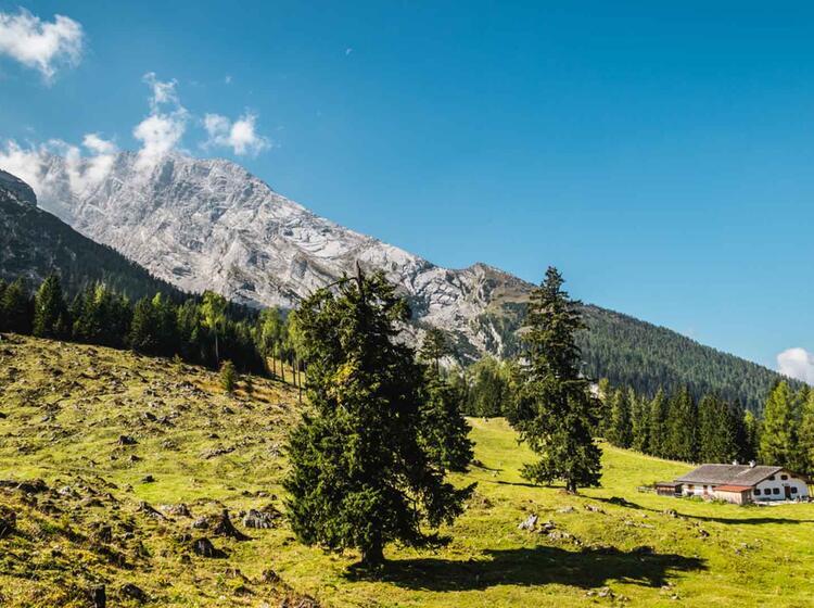 Die Kuehroint Alm Auf Dem Weg Zum Watzmann Gipfel