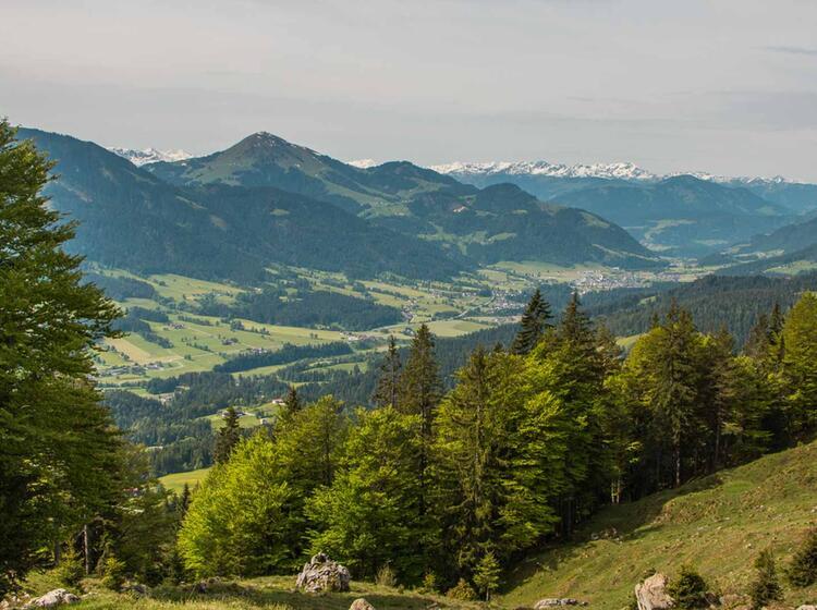 Einsteiger Wanderung Im Wilden Kaiser Mit Bergfuehrer