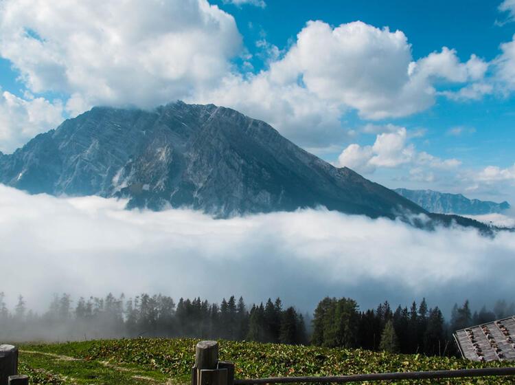 Gefuehrte Almwanderung In Berchtesgaden