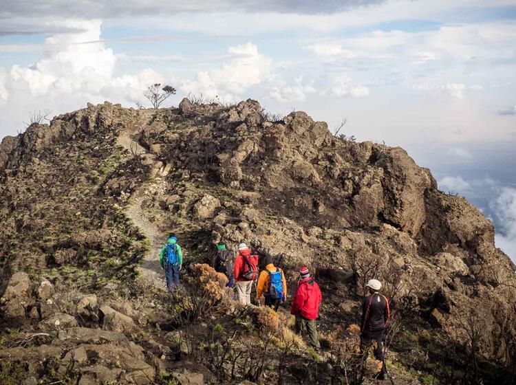 Gefuehrte Trekkingtour Auf Den Kilimandscharo Mit Deutschem Reiseleiter