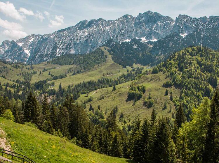 Gefuehrtes Bergwandern In Tirol Am Wilden Kaiser Auf Der Kaiserrunde