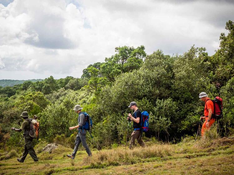 Gefuehrtes Trekking Am Kilimandscharo