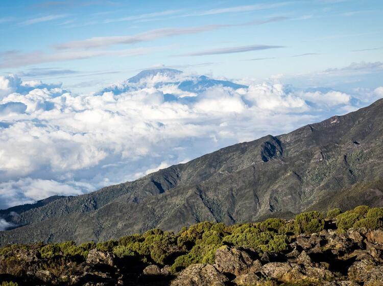 Kilimandscharo Besteigung 362
