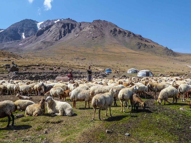 Nomaden Am Sabalan Trekkingreisen In Den Iran