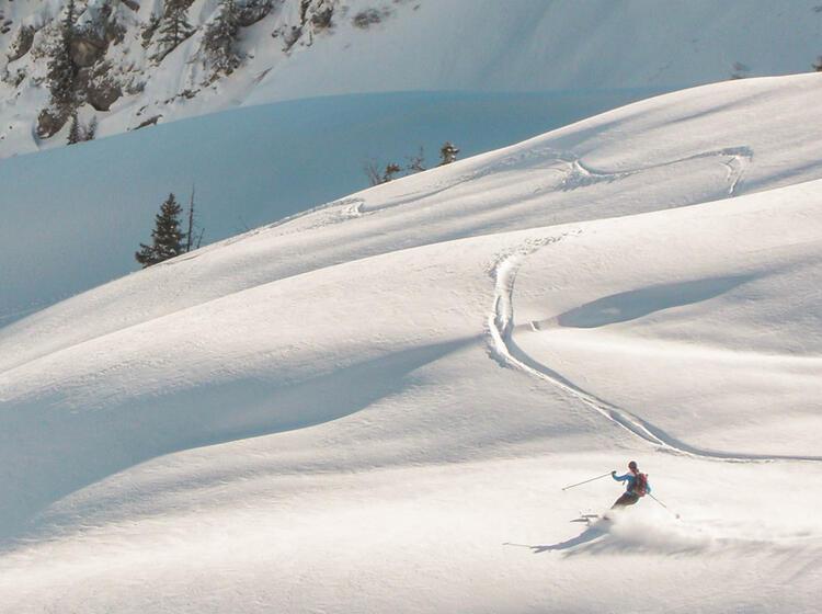 Pulverschneeabfahrt Auf Skitour In Den Alpen