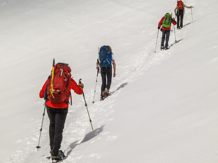 Schneeschuh Touren Mit Bergfu Hrer Grossvenediger