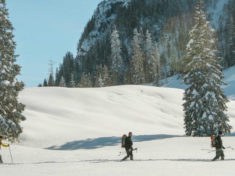 Schneeschuhtouren Fu Hrung
