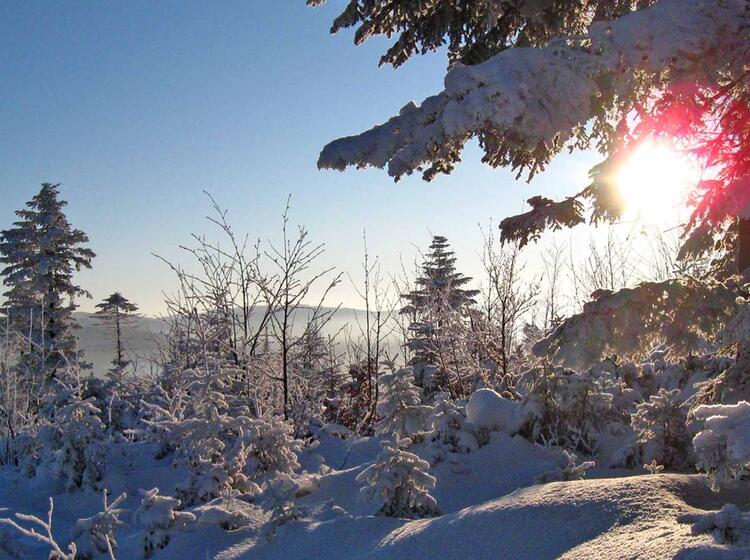 Schneeschuhwandern Bayrischer Wald Grossen Arbersee