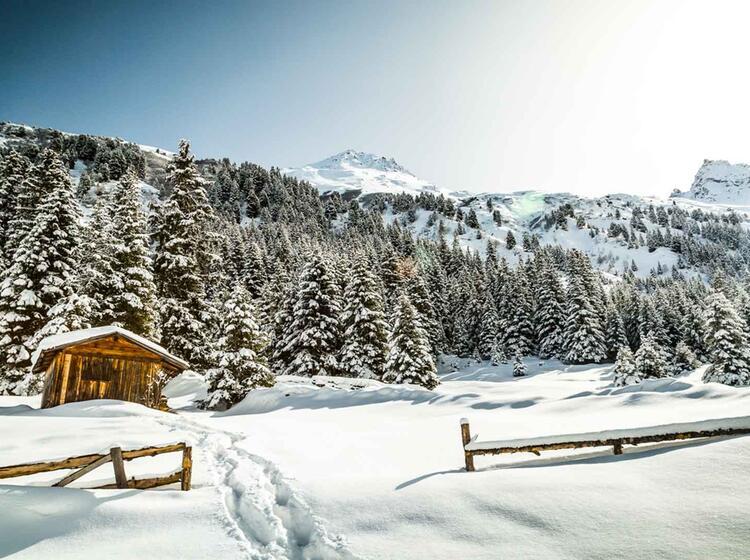 Skitourenkurs In Der Silvretta