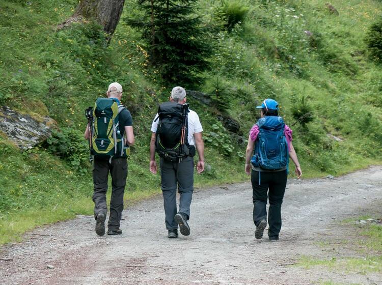 Tauernwanderung Mit Bergfuehrer