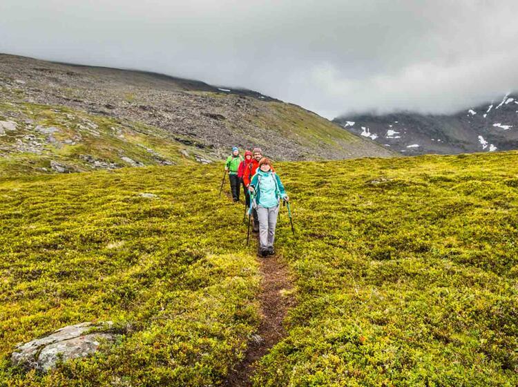 Traumhafte Wege In Nordnorwegen Zum Wandern