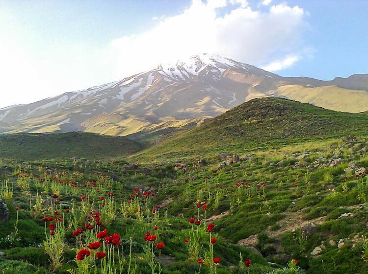 Trekking Zum Damavand Im Iran