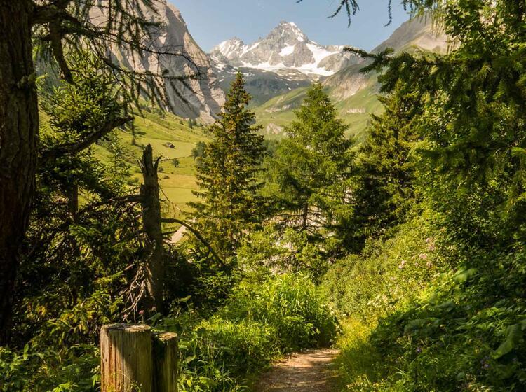 Wandern Zum Lucknerhaus Mit Blick Auf Den Grossglockner