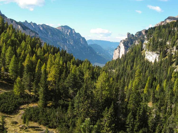 Wanderwoche In Den Dolomiten In Der Fanes